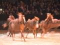 Equita Longines Le Salon du Cheval de Lyon_0735s.jpg