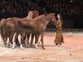 Equita Longines Le Salon du Cheval de Lyon_0845s.jpg