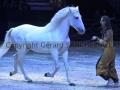 Equita Longines Le Salon du Cheval de Lyon_0873s.jpg