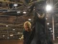 Equita Lyon 2017 _ Cabaret Equestre_20171101_2261 - Chevaux Frisons - Copyright Gerard SANCHEZ-ALLAIS.jpg