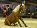 Equita Lyon 2017 _ Cabaret Equestre_20171101_2488 _ LES COMTOIS EN FOLIE - Copyright Gerard SANCHEZ-ALLAIS.jpg