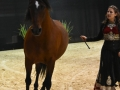 Equita Lyon 2017 _ Cabaret Equestre_20171101_2528 _ Gillianne SENN - Copyright Gerard SANCHEZ-ALLAIS.jpg