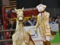 Equita Lyon 2017 _ Cabaret Equestre_20171101_2642 _ Mario STIVAL - Copyright Gerard SANCHEZ-ALLAIS.jpg