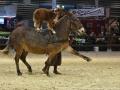 Equita Lyon 2017 _ Cabaret Equestre_20171101_2927 _ Troupe JEHOL - Copyright Gerard SANCHEZ-ALLAIS.jpg