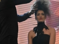 Show Intercoiffure France - Beaute Selection Lyon 2016_2806_Copyright Gerard Sanchez-Allais.jpeg