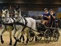 Equita Lyon 2017 _ Cabaret Equestre_20171101_2184 _ Attelage VOGEL - Copyright Gerard SANCHEZ-ALLAIS.jpg
