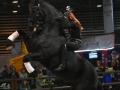 Equita Lyon 2017 _ Cabaret Equestre_20171101_2254 - Chevaux Frisons - Copyright Gerard SANCHEZ-ALLAIS.jpg