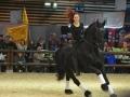 Equita Lyon 2017 _ Cabaret Equestre_20171101_2282 - Chevaux Frisons - Copyright Gerard SANCHEZ-ALLAIS.jpg