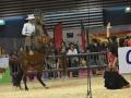 Equita Lyon 2017 _ Cabaret Equestre_20171101_2425 _ EQUESTRIARTE - Copyright Gerard SANCHEZ-ALLAIS.jpg