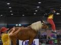 Equita Lyon 2017 _ Cabaret Equestre_20171101_2479 _ LES COMTOIS EN FOLIE - Copyright Gerard SANCHEZ-ALLAIS.jpg