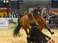 Equita Lyon 2017 _ Cabaret Equestre_20171101_2541 _ Gillianne SENN - Copyright Gerard SANCHEZ-ALLAIS.jpg