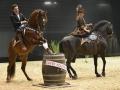 Equita Lyon 2017 _ Cabaret Equestre_20171101_2700 _ KALIDOR Paul de OLIVEIRA - Copyright Gerard SANCHEZ-ALLAIS.jpg