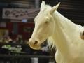 Equita Lyon 2017 _ Cabaret Equestre_20171101_2760 _ Iseulys DESLE - Copyright Gerard SANCHEZ-ALLAIS.jpg