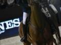 Equita Lyon - Longines FEI World Cup TM presented by GL events - Lyon Eurexpo - octobre 2016 - _1143_remise des prix_- Copyright Gerard Sanchez-Allais.jpeg