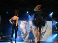 Show Intercoiffure France - Beaute Selection Lyon 2016_2859_Copyright Gerard Sanchez-Allais.jpeg